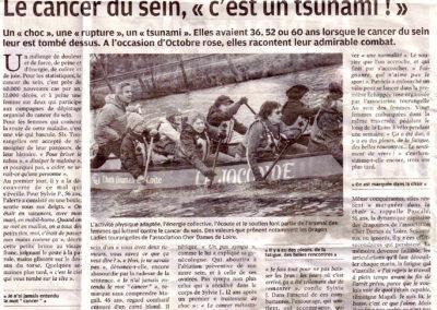 Dossier Nouvelle Republique 1